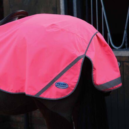 WeatherBeeta 300D Reflective Exercise Sheet- Pink