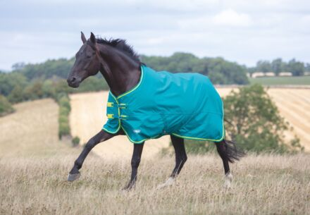 Shires Tempest Original 50G Turnout Rug- Green/Lime