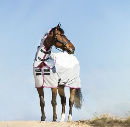 Horseware Amigo Airflow Green/ Purple/ Mint