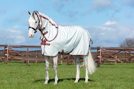 Horseware Aussie Allrounder Burgundy