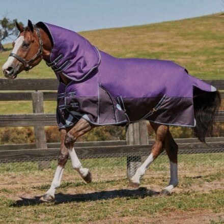 Weatherbeeta Comfitec Plus Dynamic Detach-a-neck Lite- Purple/Black