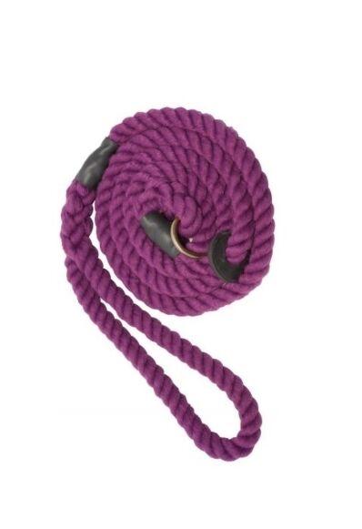 Bisley Elite Slip Lead Purple