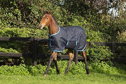 Horseware Amigo Foal Rug Ripstop 200g Navy/ Electric Blue