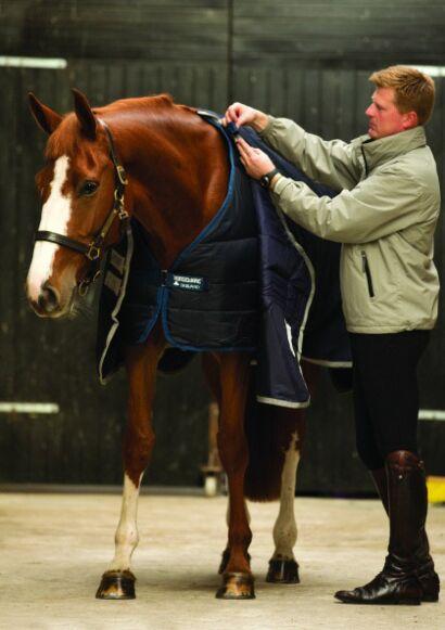 Horseware Liner 100g