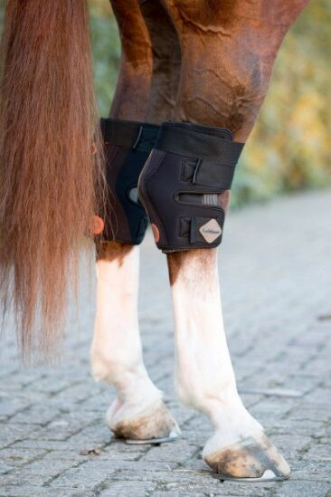 LeMieux Conductive Magno Therapy Hock Boots