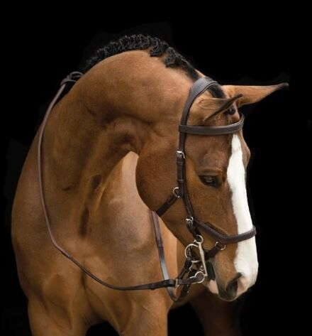 Horseware Rambo Micklem Competition Bridle Brown
