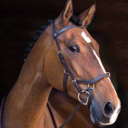 Horseware Rambo Micklem Multi Bridle Brown