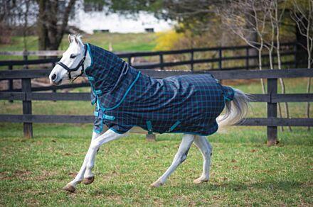 Horseware Amigo Pony Plus 50g Turnout Rug - Black Check/Teal/Silver