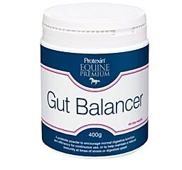 Protexin Gut Balancer 400g