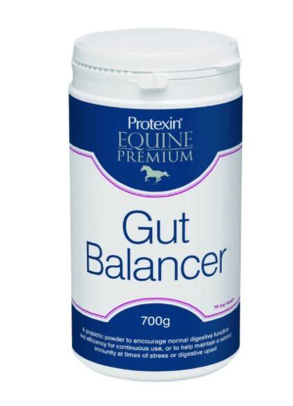 Protexin Gut Balancer 700g