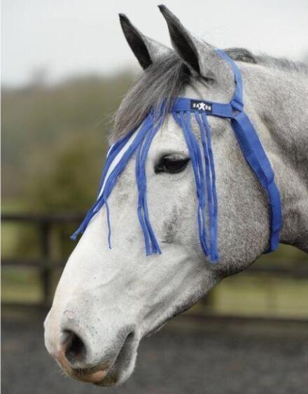 Saxon No Headcollar Fly Fringe Blue