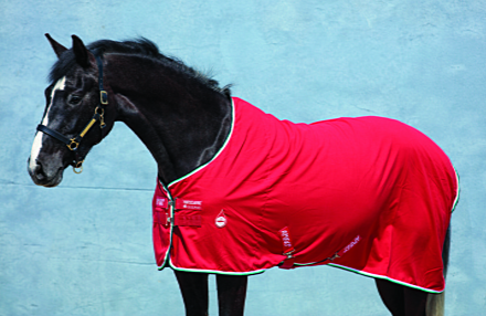 Horseware Amigo Stable Sheet Red/White/Green/Black