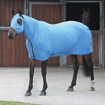 Shires Stretch Rug Blue