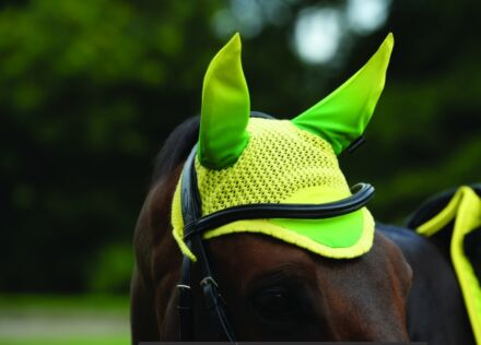 Weatherbeeta Prime Ombre Ear Bonnet - Sunflower