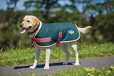 Weatherbeeta Teal Cerise & yellow Parka 1200D Dog Coat