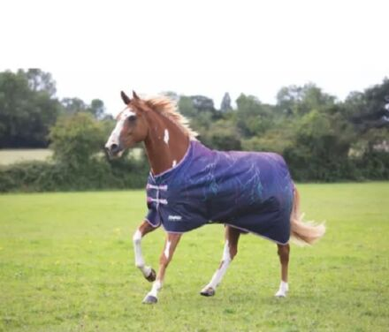 Tempest Original Lite Turnout Rug-Purple Lightening