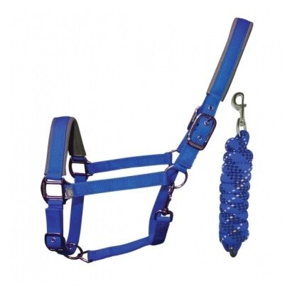 Woof Wear Contour Head Collar & Lead Rope- Electric Blue