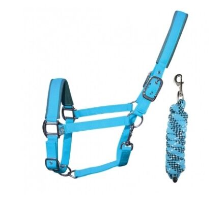 Woof Wear Contour Head Collar & Lead Rope- Turquoise