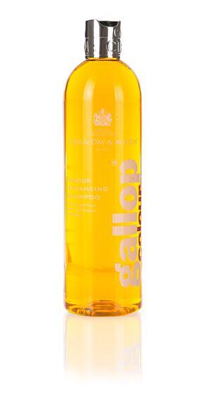 Carr & Day & Martin Gallop Colour Enhancing Chestnut Shampoo 500ml