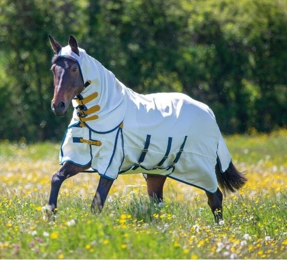 SHIRES HIGHLANDER PLUS SWEET-ITCH COMBO