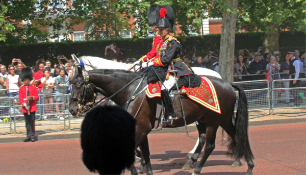Princess Anne: A Passion for Horses
