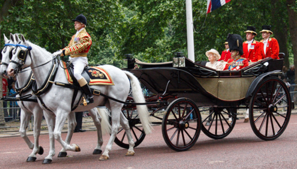 Prince Philip: Equestrian Life
